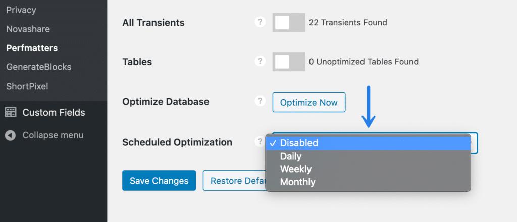 WordPress Database Scheduled Optimization